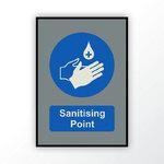 Sanitising Point Mat  - Large
